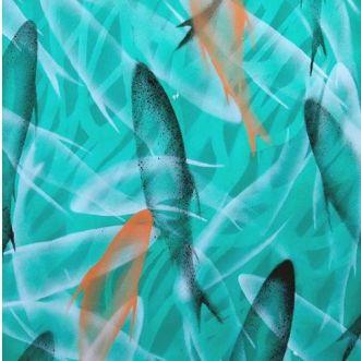 Michael Beerens - Street artiste - zoom poissons